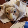 Photo #7 - gluing arms on the tauntaun, mask not painted yet