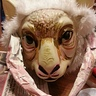 Photo #8 - goat mask painted to look like tauntaun