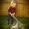 Photo #1 - Lumberjack