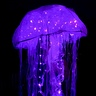 Photo #1 - Luminous Jellyfish