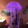 Photo #2 - Luminous Jellyfish