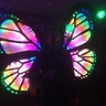 Photo #2 - Magic Butterfly