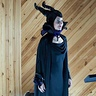 Photo #3 - Maleficent on display.