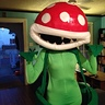 Photo #4 - Mario Bros Piranha Plant