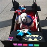 Photo #2 - Another view of Max and his Batmobile