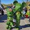 Photo #3 - Mickey & Minnie Topiary