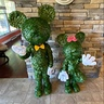 Photo #4 - Mickey & Minnie Topiary