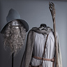 Photo #7 - Gandalf Costume