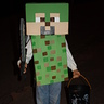 Photo #3 - another Minecraft night