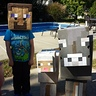 Photo #4 - Minecraft Characters