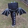 Photo #3 - Minecraft Ender Dragon
