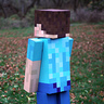 Photo #2 - Minecraft Steve