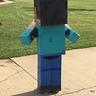 Photo #4 - Minecraft Steve