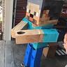 Photo #5 - Minecraft Steve