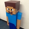 Photo #3 - Minecraft Steve side view...