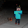 Photo #3 - Minecraft Steve & Creeper