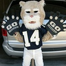 Photo #1 - Mini Cougar Mascot