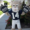 Photo #3 - Mini Cougar Mascot