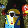 Photo #4 - minion down