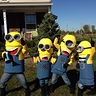 Photo #1 - Minion Madness