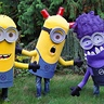 Photo #1 - Trio of Minions from Despicable Me