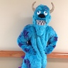 Photo #2 - Sully