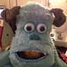 Photo #2 - Sulley's head