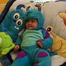 Photo #3 - Monster's Inc. Sulley
