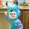 Photo #3 - Monsters Inc. Sully