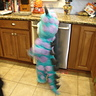 Photo #4 - Monsters Inc. Sully