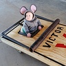 Photo #3 - Mouse in a Mouse Trap