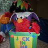 Photo #4 - Elmo loves the box