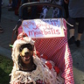 Photo #5 - Taking a break at the pet parade in  his spaghetti and meatballs stroller