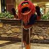 Photo #0 - Muppets Animal