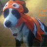 Photo #1 - Miss Mikki as Nemo