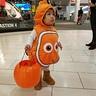 Photo #2 - Nemo