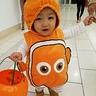 Photo #3 - Nemo