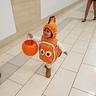 Photo #6 - Nemo