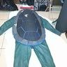 Photo #7 - the suit all green