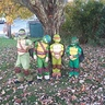 Photo #1 - Super Ninja Turtles