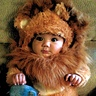 Photo #1 - Noah's Ark Baby Lion