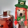 Photo #3 - Pearl the red headed Leprechaun