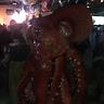 Photo #3 - Octopus