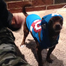 Photo #2 - RICCO as Captain America