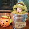 Photo #4 - Oscar the Grouch
