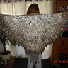 Photo #1 - Lots and lots of feathers