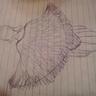 Photo #3 - Owl