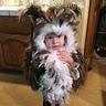 Photo #1 - Owl