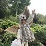 Photo #7 - Owl