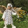 Photo #10 - Owl
